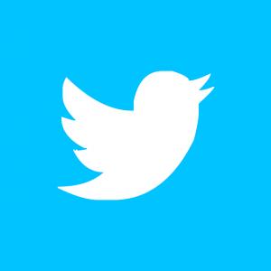 icone-twitter